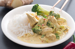 Chicken And Broccoli Stock Photography