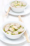 Chicken broth with Chinese dumplings, vertical Stock Image