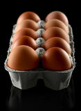 Chicken brown egg Royalty Free Stock Photography