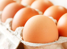 Chicken brown egg. Closeup view background Stock Photo
