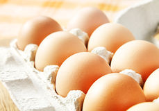 Chicken brown egg. Closeup view background Royalty Free Stock Photo