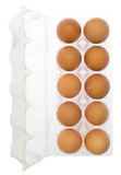 Chicken brown egg closeup view background Royalty Free Stock Images