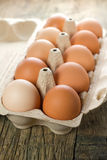 Chicken brown eggs Royalty Free Stock Image