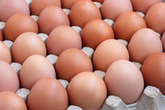 Chicken brown eggs in packing , the top view. Royalty Free Stock Images