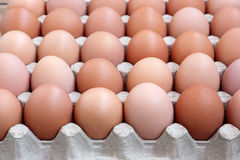 Chicken brown eggs in packing , the top view. Royalty Free Stock Photo