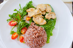 Chicken with brown rice stock photography