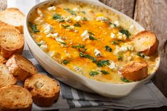 Chicken buffalo dip with blue cheese and greens close-up in a ba Royalty Free Stock Image