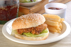 Chicken burger. Delicious and juicy chicken burger stock image