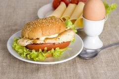 Chicken burger Royalty Free Stock Photos