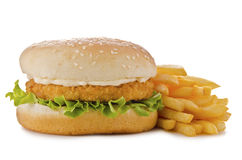 Chicken burger. Isolated on white background. Close up Stock Images