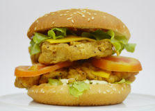 Chicken Burger - Big juicy burger on white background - Rounders Stock Photos