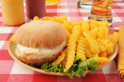 Chicken burger with fries and beer Stock Photos
