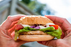 Chicken Burger or Sandwich With Salad Royalty Free Stock Photos