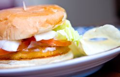 Chicken burger served with fresh salad Royalty Free Stock Photo