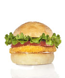 Chicken burger. Stock Photos