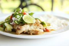 Chicken Burrito Stock Images