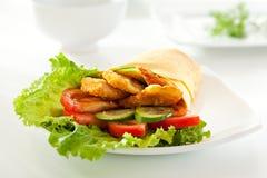Chicken Burrito Royalty Free Stock Image