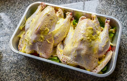 Chicken with butter in tray Royalty Free Stock Photos