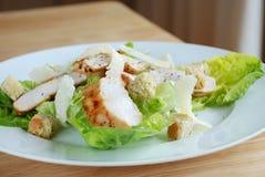 Chicken caasar salad Royalty Free Stock Photos