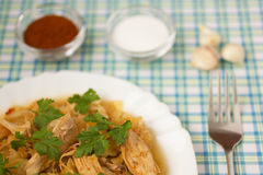 Chicken with cabbage_2 Stock Images