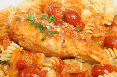 Chicken Cacciatore with Fusilli Pasta. Italian casseroled breast of chicken with fusilli pasta and grated parmesan cheese Royalty Free Stock Photos