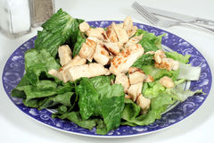 Chicken Caesar Salad. This is an image of a plate of chicken caesar salad stock photo