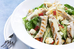 Chicken Caesar Salad. With romaine lettuce, croutons, grated parmesan, bacon bits, and grilled chicken breast.  Delicious Royalty Free Stock Image