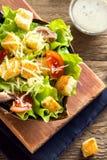 Chicken caesar salad Stock Images