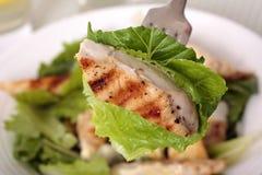 Chicken caesar salad on the fork Stock Image