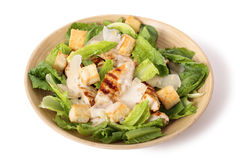 Chicken caesar salad on white background Royalty Free Stock Photography