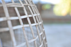 Chicken in cage waiting for food in farm Stock Images