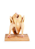 Chicken carcass  Stock Image