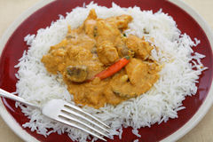 Chicken cashew curry plate Stock Photos