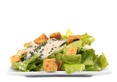 Chicken ceasar salad isolated Stock Image