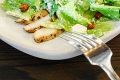Chicken Ceasar salad Stock Image