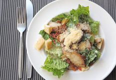 Chicken ceasar salad in a white plate Stock Photography