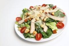 Chicken Cesar salad. On white plate Stock Photos