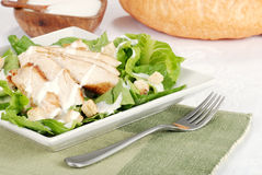 Chicken cesar salad Stock Photography