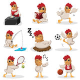 Chicken characters doing different  activities Stock Photos