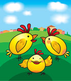 Chicken royalty free illustration