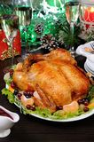 Chicken for Christmas stock photography