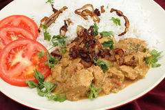 Chicken coconut korma closeup Royalty Free Stock Image