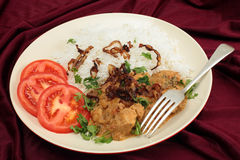 Chicken coconut korma meal. The popular south-Indian variant of Chicken Korma, incoporating coconut, served with boiled basmati rice and garnished with coriander Stock Photography