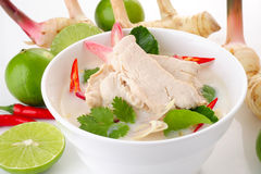 Chicken in coconut milk soup Royalty Free Stock Images