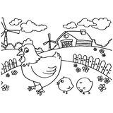 Chicken Coloring Pages vector Stock Images