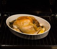 Chicken cooked in the oven Royalty Free Stock Photo
