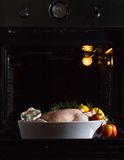 Chicken cooked in the oven Royalty Free Stock Image