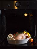 Chicken cooked in the oven Royalty Free Stock Photography