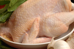 Chicken for cooking. Chicken in the dish, ready for cooking Royalty Free Stock Photography