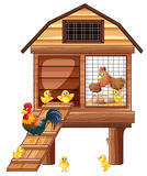 Chicken coop with many chicks. Illustration Royalty Free Stock Photography